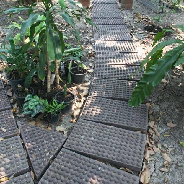 DIY ทำพื้นคอนกรีตนวดฝ่าเท้าเดินเล่นในสวน ด้วยแม่พิมพ์คอนกรีต